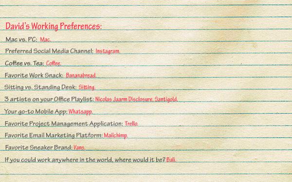 Working-Preferences-David-Robustelli