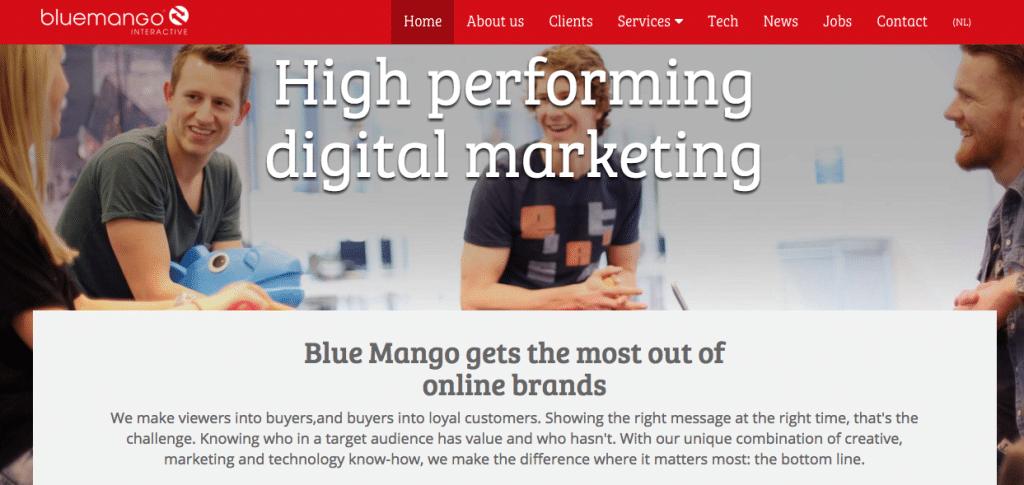 BlueMango Interactive-Digital-Agencies