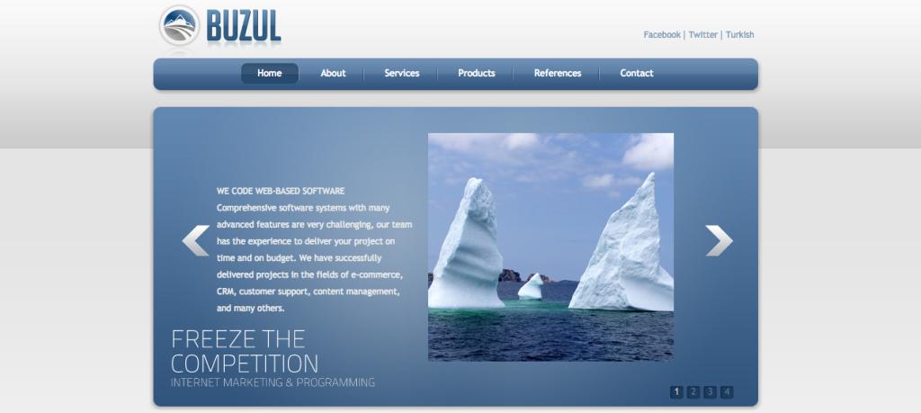 Buzul Teknoloji - Digital - Agency - Istanbul