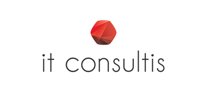 it-consultis-agency-digital-shangai