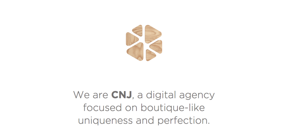 CNJ - Digital - Agency - Slovenia