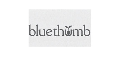 Bluethumb-Philippines-Top-Digital-Agencies