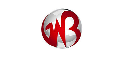 Gowebbaby Logo