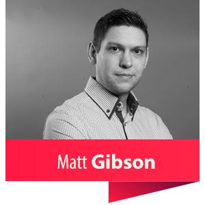 matt-gibson-cyber-duck