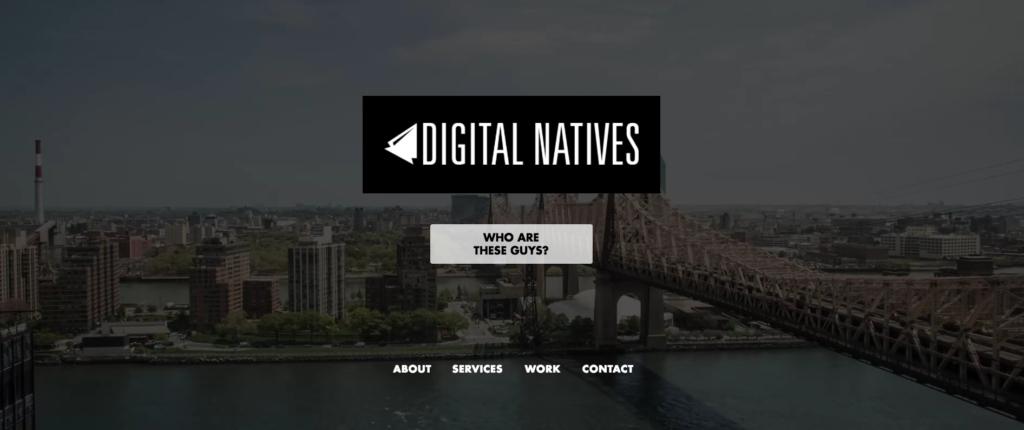 Digital Natives Group - New York - Digital - Agencies